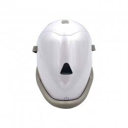 Steam Face Mask Beauty Machine